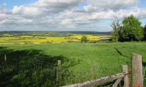 View Across Shirley Moor with Woodchurch in the far distance